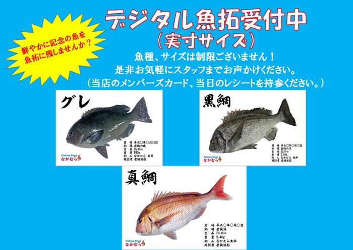 デジタル魚拓受付中.jpg-web